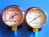原装登福压力表2116732、登福润滑油QX100108