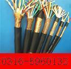 模拟量信号电缆  ZRA-DJVP2VP2
