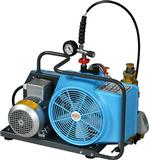 JUNIOR II德国宝华可携带式空气压缩机/便携式潜水运动用压缩机