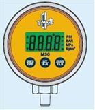 数字式标准压力表,数字大气压力表