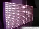 厂家直销户外P10防水LED单元板(光磊) p10单元板 led单元板