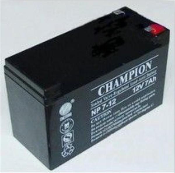 冠军12V65AH蓄电池 UPS电源专用蓄电池 铅酸免维护蓄电池