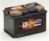 VIPIEMME SPA 蓄电池 VIPIEMME SPA电池组 电池