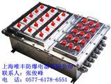 防爆动力不锈钢配电箱|BXD51-12K/100A|304材质