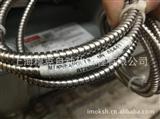 BT25SM600 美国banner邦纳光纤放大器