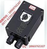 BZZ8050(BEZ58)防爆防腐转换开关 依客思为您