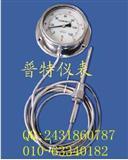 普特DTM不锈钢压力式温度计