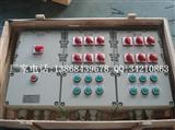 BXQ51系列防爆动力(电磁起动)配电箱(IIB、IIC) BXQ51防爆动力配电箱