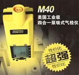 """""""M40复合式气体检测报警器""""英思科"""