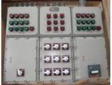 BXM(D)防爆照明动力配电箱,钢板配电箱
