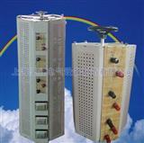接触式调压器厂家 选上海坚红电气15021312021