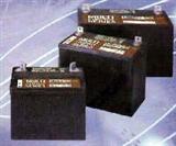 大力神电池LBT系列100AH到货200只订购从速