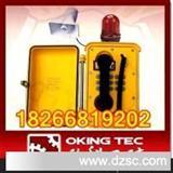 工业抗噪电话 防爆电话机 通讯电缆接线盒