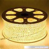 QC366 3528-60珠高压220V RGB七彩PVC套管LED灯条灯带工厂促销