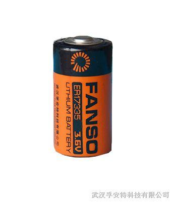 能量型一次性锂电池图片