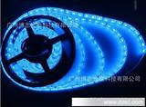 博志品牌 5050贴片led软灯条灯带 30灯/米不防水12v高亮蓝光