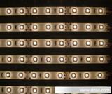 LED软灯条 防水 3528贴片LED
