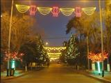 LED过街灯/LED灯光隧道/路灯杆美化灯/LED艺术灯