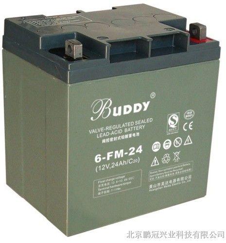 宝迪6-fm-24 12v24ah 20hr 阀控式免维护蓄电池