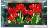 户外P16全彩LED显示屏/品质保证/价格优惠