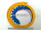 光纤尾纤 12芯束状尾纤
