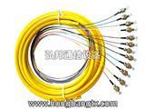 光纤跳线厂家 12芯束状尾纤