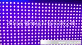 P10单紫,P10单紫单元板,P10单紫,P10紫色LED屏64