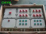 BXM(D)防爆照明(动力配电箱) 根据图纸定做报价防爆箱