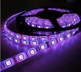 RGB灯带  5050套管防水灯条