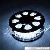 厂家直销 专业生产LED彩虹灯串 LED彩虹管 LED3528贴片灯带 白色