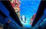 海洋馆LED天幕
