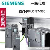 西门子PLC S7-300 电源模块 6ES7307-1EA01-0AA0