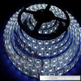 5050LED灯带 12LM/珠 60珠/米,高压,防水灯带,厂家直销,现货