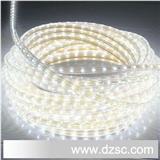 LED灯带灯条 5050软灯条
