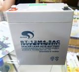 广东赛特蓄电池BT-12M4.5AC参数价格