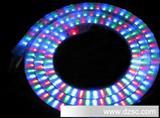 环保节能型LED水晶灯带  透明灯带 LED柔性霓虹灯带 LED灯条