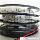 厂家 5050led灯条.5050各种颜色led柔性灯条.灯带