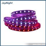 生产销售 精工细做LED紫色灯条 品质优良