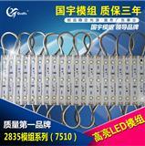 国宇2835系列7510LED贴片模组 LED贴片批发 湖南国宇厂家直供