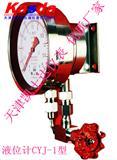 CYJ-1差压计,CYJ-1液位计,CYJ双波纹管差压液位计
