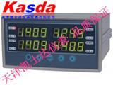 双排温度显示仪,双通道温度显示表,2路数显表,conTronix温控仪
