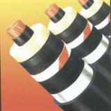 耐火电力电缆_耐火电力电缆安装要求 /品牌