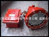 DGS175/127B(A)矿用隔爆型投光灯