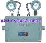 BAJ52/127V矿用隔爆型应急灯
