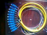 SC12芯束状尾纤