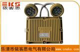 BSD51-SY20防爆应急射灯,BAJ52防爆双头应急灯价格