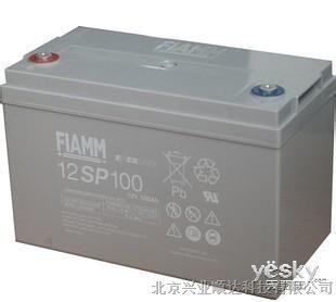 供应FIAMM蓄电池